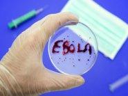 У США починаються випробування на людях канадської вакцини проти вірусу Ебола
